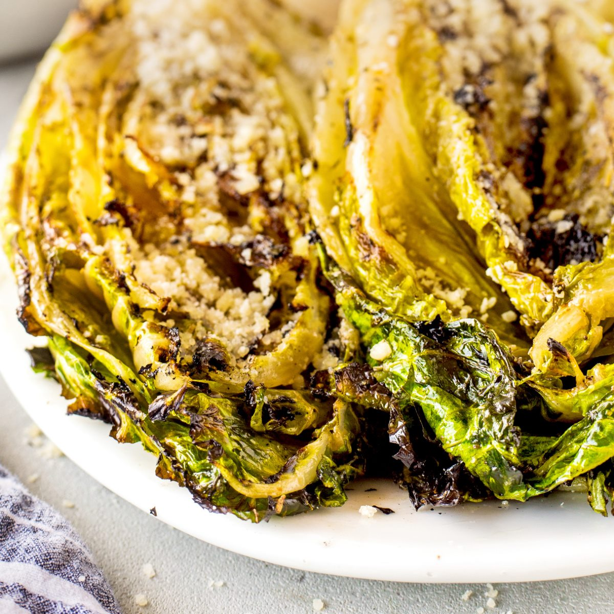 Close up picture of grilled romaine lettuce halves on a white platter with grated cheese sprinkled on top.