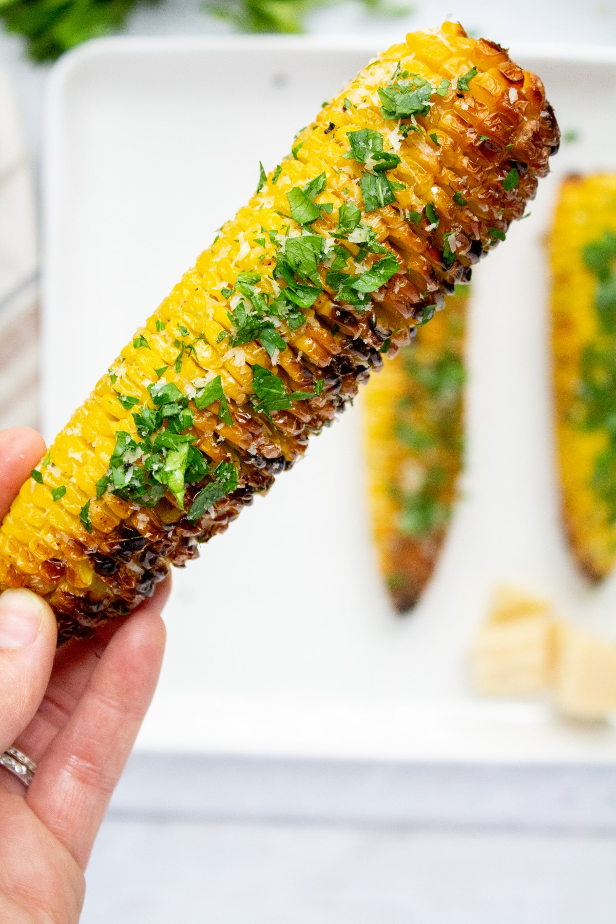 Grilled cob of corn covered in grated parmesan, chopped parsley and minced garlic held up in one hand.
